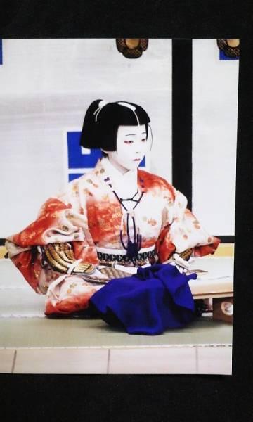 歌舞伎座・南座 舞台 生写真 113