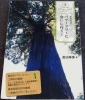 東京周辺パワーツリーに会いに行く!|ご神木 巨木 パワースポット 所在地マップ 日比谷公園 芝東照宮 王子神社 奥多摩 高尾山 巨樹#◇