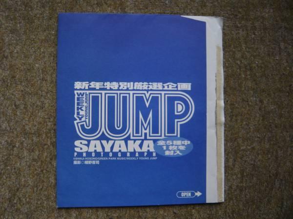 未開封★SAYAKA(神田沙也加)ヤンジャン2002 6.7合併号付録