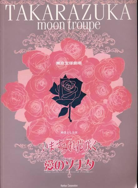 宝塚歌劇 月組『いますみれ花咲く/愛のソナタ』