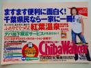 中吊り広告/ポスター/田中麗奈/千葉ウォーカー/B3版/非売品*