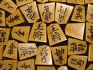 ▲蛍雪作鵞堂薩摩黄楊孔雀杢盛上将棋駒▲新品/桐製平箱付