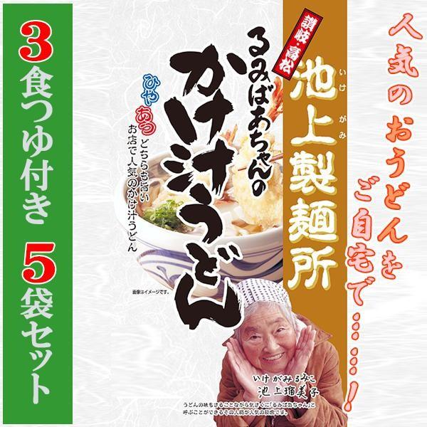 池上製麺所 るみばあちゃんのかけ汁うどん 3食つゆ付き 5袋セット★c 麺類 食品 麺類 うどん 高松◇1