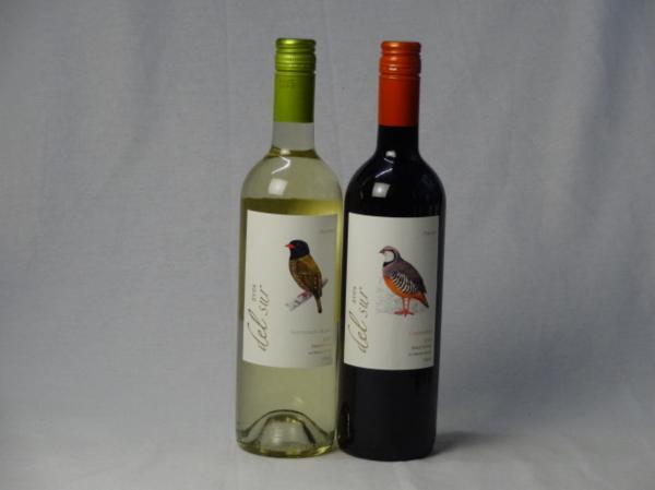 チリ白赤ワイン2本セット デル・スール カルメネール ミディ_画像1
