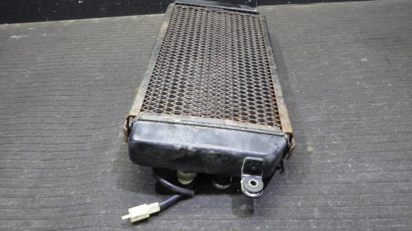 スズキ デスペラード400X VK52A ラジエター S114-59_画像4