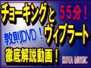 ■チョーキングとヴィブラートの基本を完全マスター教則DVD■