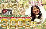 ★やまがたのお米はうまいずね~★山形県産28年度米「はえぬき」10kg うれしいおまけ付き! 発送当日に精米してお届けします。
