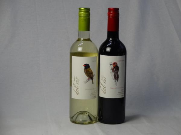 チリ白赤ワイン2本セット デル・スール カベルネ・ソーヴィニ_画像1