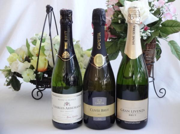 世界のスパークリングワイン辛口3本セット シャルル・アルマン_画像1