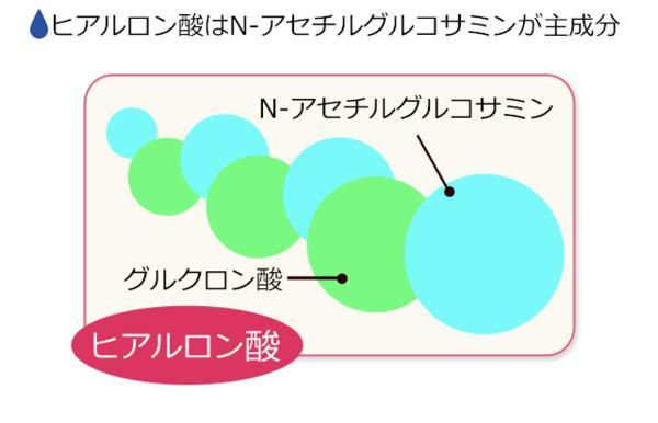 目玉価格 送料無料 Nアセチルグルコサミン(約1ヶ月分)サプリ_画像6