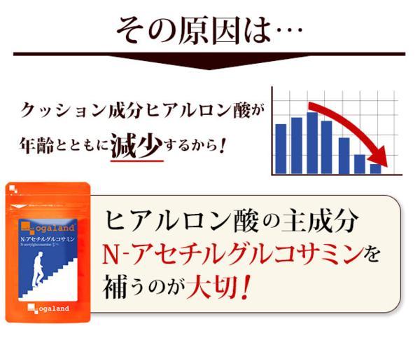 目玉価格 送料無料 Nアセチルグルコサミン(約1ヶ月分)サプリ_画像4