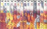 「男組■池上遼一 雁屋哲」文庫版 全14巻東京ゆうパック453円