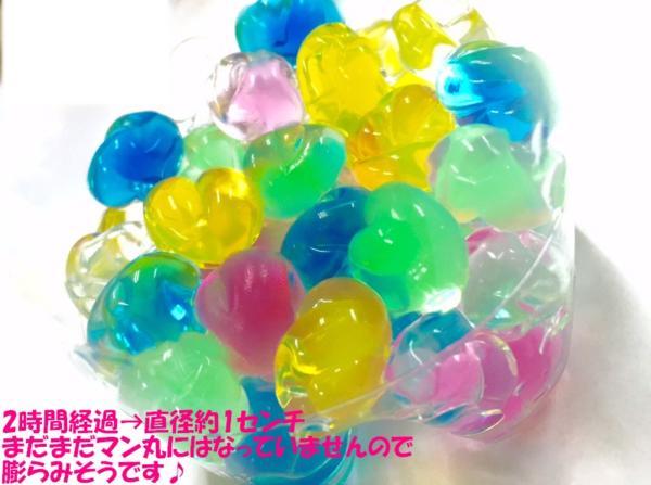 マジッククリスタルボール緑5gハイドロカルチャー 観葉植物 花の栽培に水につけるとぷよぷよボールに変身ジェリーボール