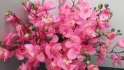 ■おすすめ!業務用大量【造花】 胡蝶蘭 ピンク 1箱24本入り TGT-118
