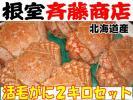 【根室斉藤商店】希少!北海道前浜産 活毛蟹2kセット(1)