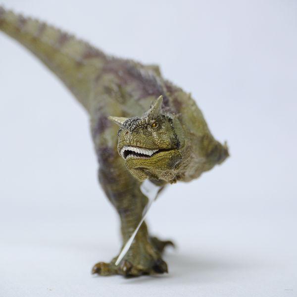 新品☆Papo社 カルノタウルス 55032☆リアル恐竜フィギュア_画像2