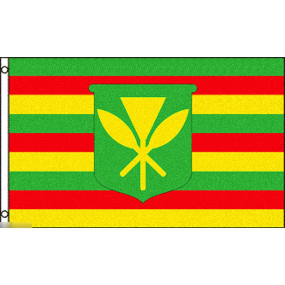 海外限定 国旗 ハワイ 先住民 ネイティブ ハワイアン 特大フラッグ_画像1