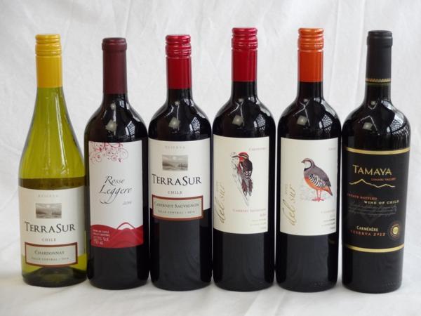 チリ赤白ワイン6本セット テラ・スル赤・白・クレマスキ リゲ_画像1