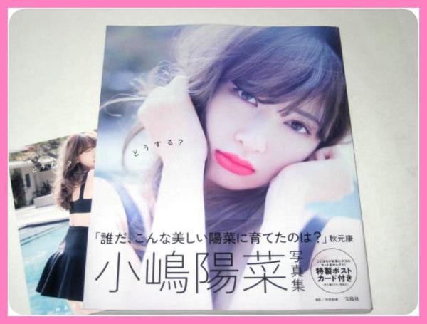 ◆ どうする? 小嶋陽菜写真集 (初版・帯・ポストカード付) ◆