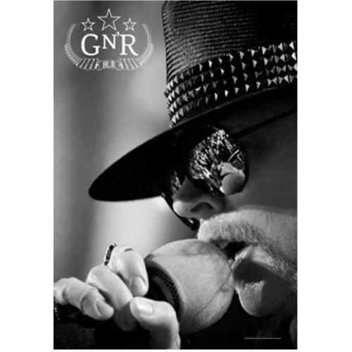 海外限定 公式 Guns N' Roses ガンズ アクセル G291 布ポスター