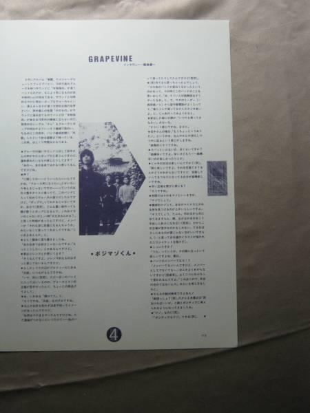 '98【覚醒でメジャーデビューの頃】GRAPEVINE グレイプバイン ♯