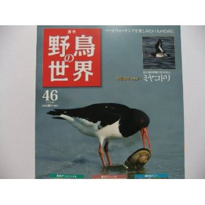 週刊 野鳥の世界 NO.46 ★3*_画像1