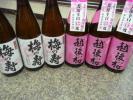 1.8L6本/お買い得品/普通酒・越後桜&梅の寿