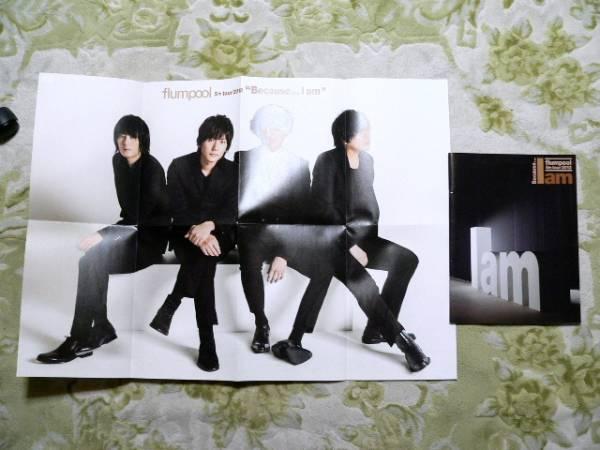Because... I am flumpool 5th tour 2012 パンフレット+ポスター