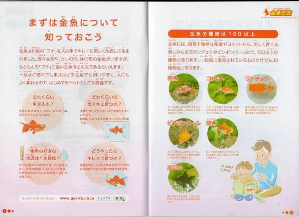 ■GEX お魚飼育BOOK 金魚元気 メダカ元気 飼育がうまくいくコツ 【萌猫堂】_画像3