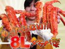Kyпить 10個 超極上 ボイルたらば蟹 2.8kg 8L さんきん1円 на Yahoo.co.jp