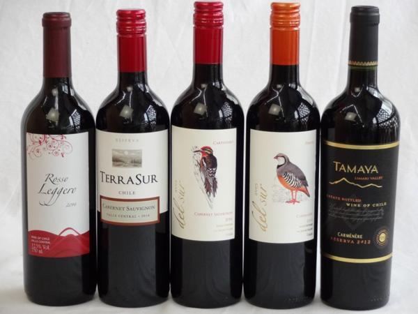 チリ赤ワイン5本セット テラ・スル(カベルネ)・クレマスキ_画像1