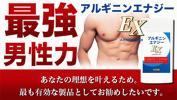 最強男性力 2種類のアミノ酸でパワー&活力!アグレッシブな毎日を!男のエナジーサプリ アルギニンエナジーEX 約6ヶ月分