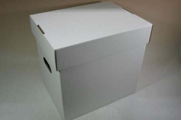 (サプライ) LD・LP保管用 蓋付き強化段ボール箱(未組み立て)_画像1