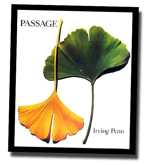 洋書 パッセージ:作品記録 アーヴィング・ペン/ Passage: A Work Record[ハードカバー] Irving Penn(輸入品)_画像1