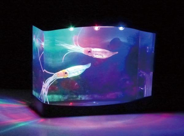 即決新品★AC/DCの2電源可能★室内水族館★アクアリウム★イカ_画像1