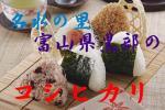 1円〜★28年産/名水の里★富山黒部コシヒカリ1等玄米10?