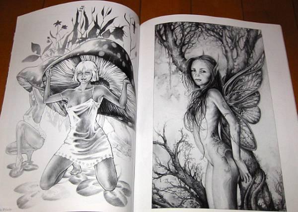洋書 妖精画集/ フェアリーテール2/ Fairy Tails2: A Gallery Girls Collection(輸入品_画像3