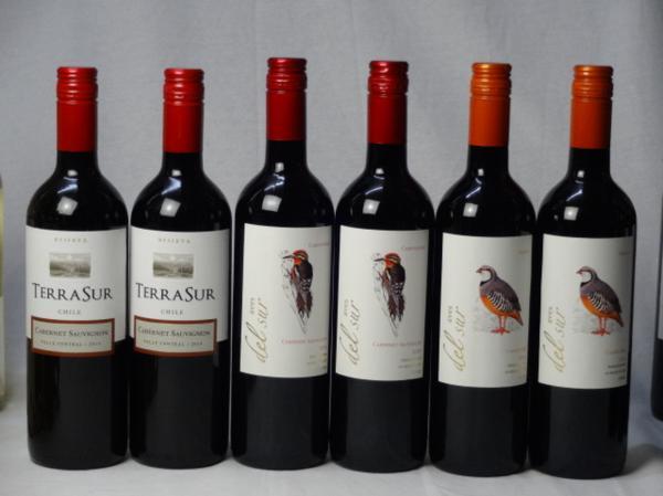 チリ赤ワイン6本セット デル・スール カベルネ・ソーヴィニ_画像1