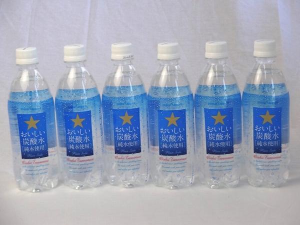 2ケース サッポロおいしい炭酸水 ペットボトル 500ml×_画像1