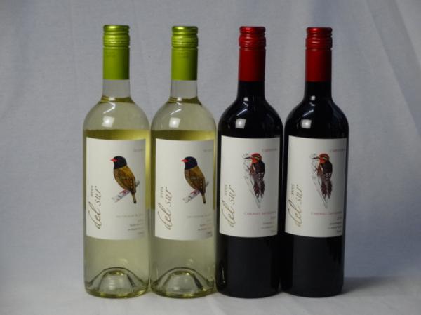 チリ白赤ワイン4本セット デル・スール カベルネ・ソーヴィニ_画像1