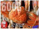 Kyпить 25尾、身入り最高!!「特大ボイルずわい3L」1尾600g前後 人気のカナダ産 на Yahoo.co.jp